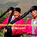 Ancient Chinese Secret for Growing the Longest Hair in the World:DIY