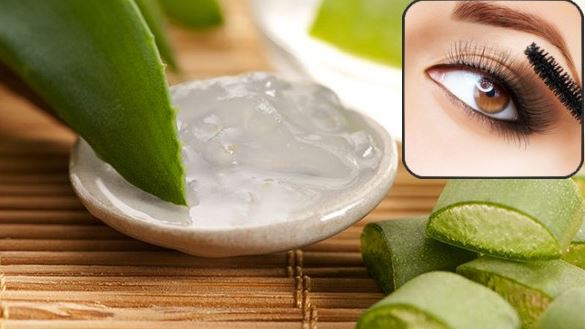 Eyelashes Growth Home Remedies In Hindi