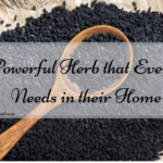 A Powerful Herb that Everyone Needs in their Home